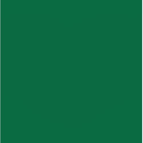 Class of 2012 Reunion logo