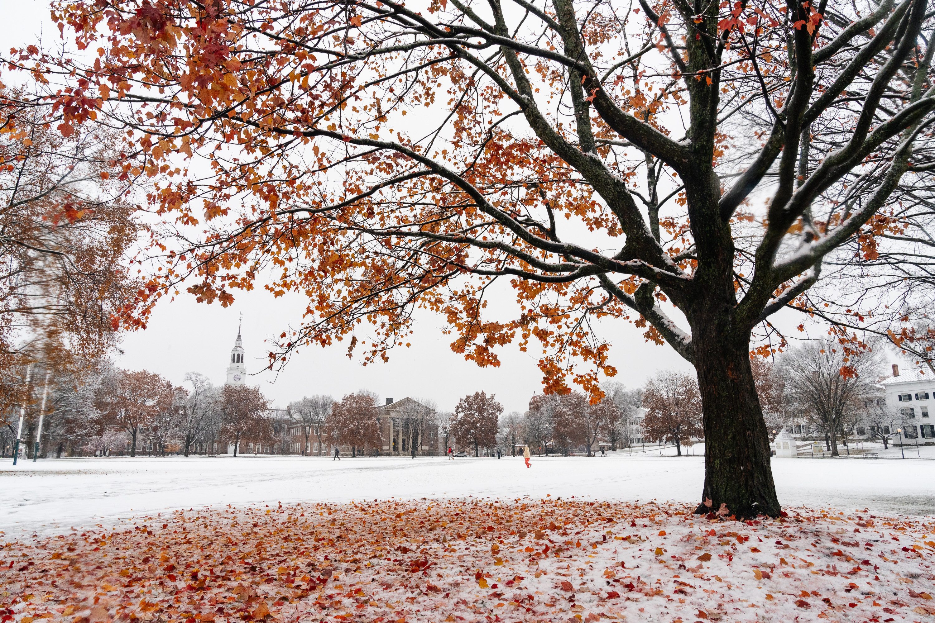 Dartmouth Green with first snow