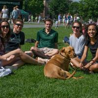 "Dartmouth Reunions ""On the Green"" in 2014."